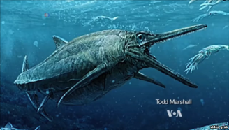 Large Creature Swam the Seas 170 Million Years Ago